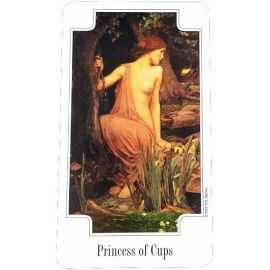 Transformation Tarot - Princess of Cups